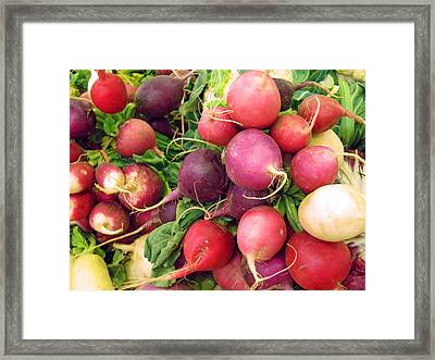 Farmers' Market Radishes Framed Print by Jean Hall