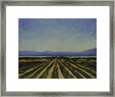 Farming By The Sea Framed Print by Maria Hunt