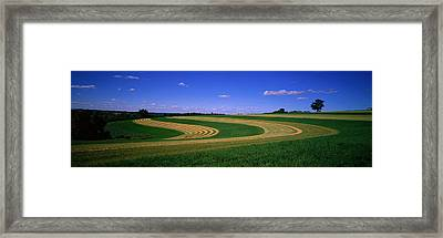 Farmland Il Usa Framed Print by Panoramic Images