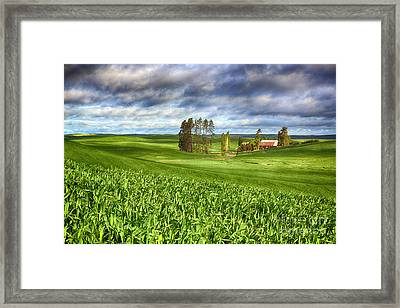 Farmstead Framed Print by Beve Brown-Clark Photography