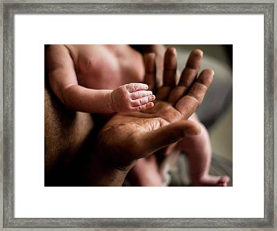 Father And Baby Son's Hand Framed Print by Samuel Ashfield