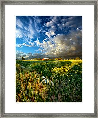Fathers Day Framed Print by Phil Koch