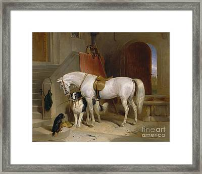 Favourites Framed Print by Celestial Images