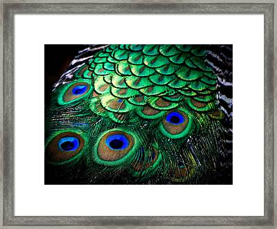 Feather Abstract Framed Print by Karen Wiles