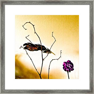 Feather And Carnation Framed Print by Bob Orsillo