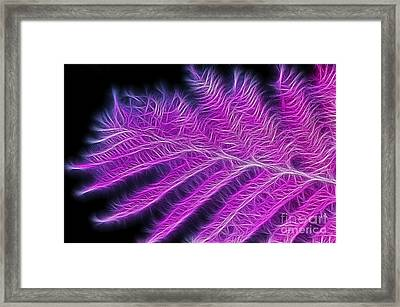 Feathered Fern Framed Print by Kaye Menner