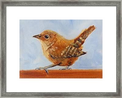 Feathered Framed Print by Nancy Merkle