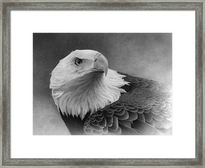 Feathered Warrior Framed Print by Doug Comeau
