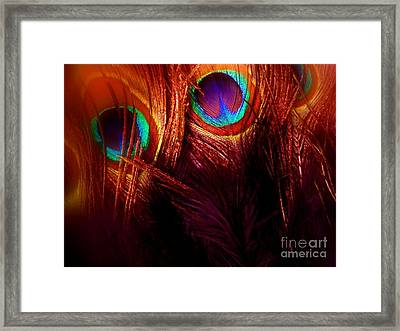 Feathers Framed Print by Newel Hunter