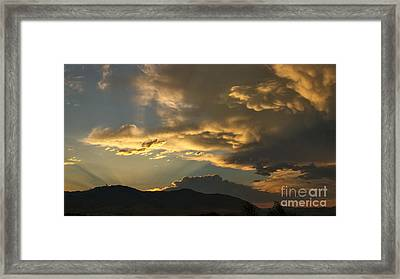 Feathers Of Sunlight Framed Print by Charles Kozierok