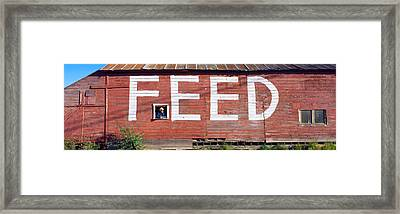 Feed Store, Newport, Wa, Usa Framed Print by Panoramic Images