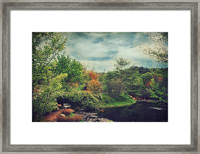 Feed Your Soul Framed Print by Laurie Search