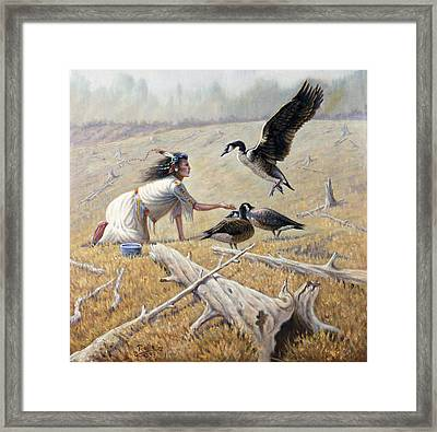 Feeding The Canadian Geese Framed Print by Gregory Perillo