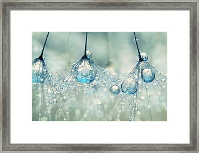Feeling Blue But Dandy Framed Print by Sharon Johnstone
