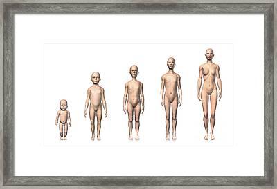 Female Human Body Scheme Of Different Framed Print by Leonello Calvetti