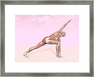 Female Musculature Performing Revolved Framed Print by Elena Duvernay