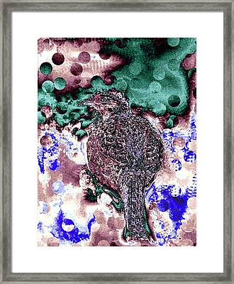 Female Pheasant Abstract Framed Print by Will Borden