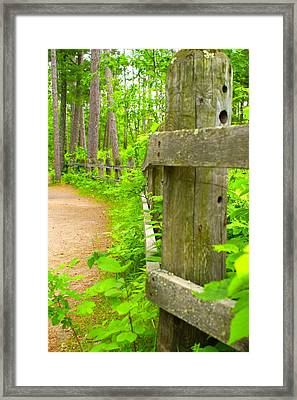 Fence In Nature Framed Print by Andrew Johnson