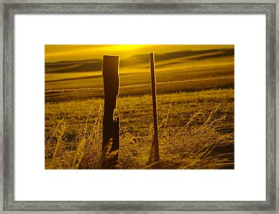 Fence Post In The Morning Light Framed Print by Jeff Swan