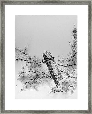 Fence With Barbed Wire Framed Print by Pam Belcher