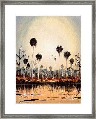 Fenholloway River Florida Framed Print by Bill Holkham