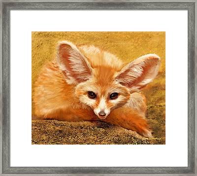 Fennec Fox Framed Print by Jane Schnetlage