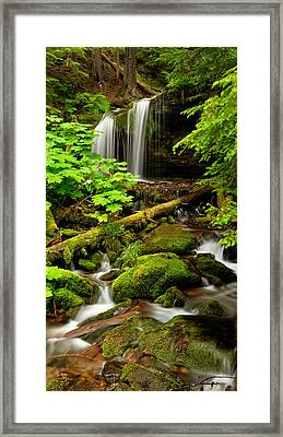 Fern Falls Panoramic Framed Print by Leland D Howard