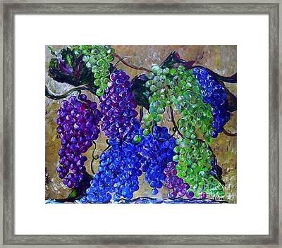 Festival Of Grapes Framed Print by Eloise Schneider