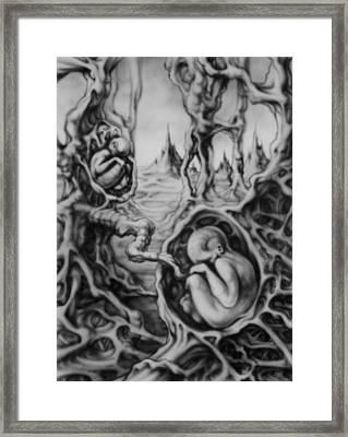 Fetal Twins Framed Print by David Bollt
