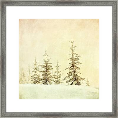 Winter's Mist Framed Print by Priska Wettstein
