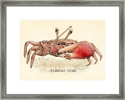 Fiddler Crab Framed Print by Eric Fan