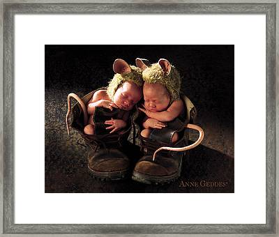 Field Mice Framed Print by Anne Geddes