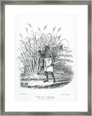 Field Negro Framed Print by British Library
