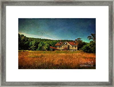 Field Of Broken Dreams Framed Print by Lois Bryan