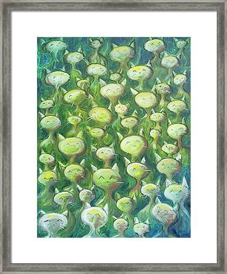 Field Of Cats Framed Print by Nik Helbig