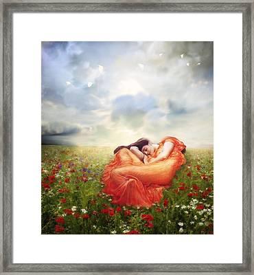 Field Of Desire Framed Print by Georgiana Romanovna