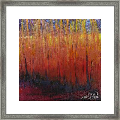 Field Of Dreams Framed Print by Melody Cleary