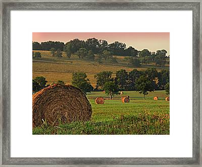 Field Of Hay Framed Print by Steven  Michael