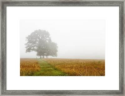 Fields In The Fog Framed Print by Andrew Soundarajan