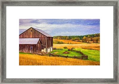 Fields Of Gold - Paint Framed Print by Steve Harrington