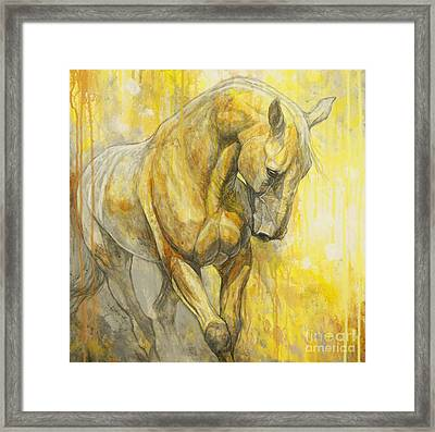 Fields Of Gold Framed Print by Silvana Gabudean