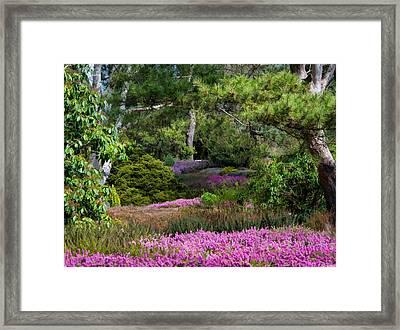 Fields Of Heather Framed Print by Jordan Blackstone