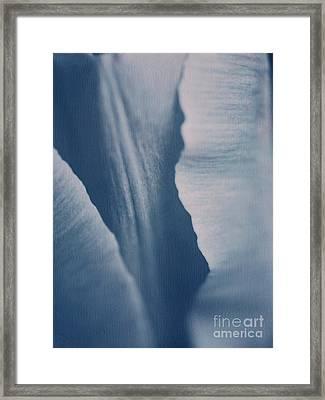 Fifty Shades Of Blue Framed Print by Irina Wardas