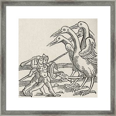 Fight Between Pygmies And Cranes. A Story From Greek Mythology Framed Print by English School