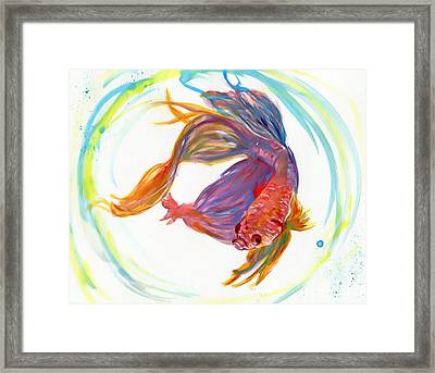 Fighting Fish Framed Print by Raquel Ventura