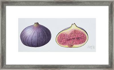 Figs Framed Print by Margaret Ann Eden