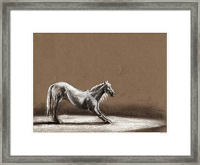 Finale Framed Print by Risa Kent