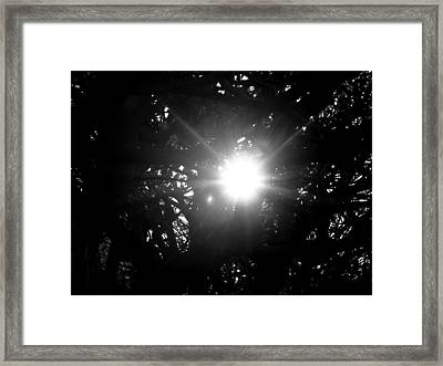 Finding Hope Framed Print by K Marshall