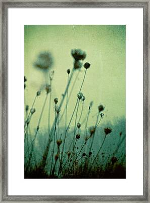 Finding Peace Within Framed Print by Joy StClaire