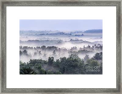 Finger Lakes Morning Framed Print by Michele Steffey